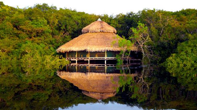 Juma Amazon Lodge - Selva Amazônica, AM