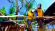 Oscar Inn Eco Resort - O espaço conta com animais como pavões, saguis, coelhos, peixes, cachorros, gansos, pássaros, etc.