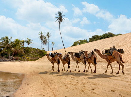 Touros, RN: Resort All-Inclusive da renomada rede Vila Galé | All-Inclusive | Resort, Viajar com Crianças, Praia, Termas e Spa, Aéreo É Mais, Mais Reservados